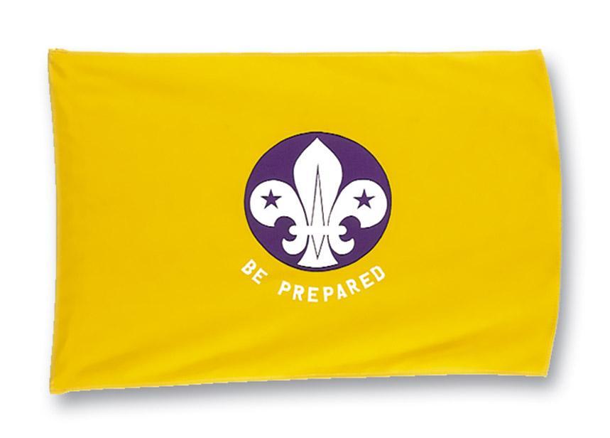 835507 Cub Scout Flag